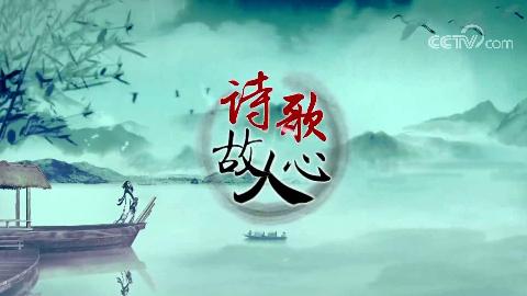 【百家讲坛】诗歌故人心(16集)【高清版】