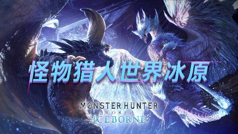 【懿老湿】PS4_【怪物猎人世界】_冰原_太刀开荒