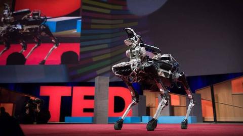 Ted 演讲:波士顿动力的机器们