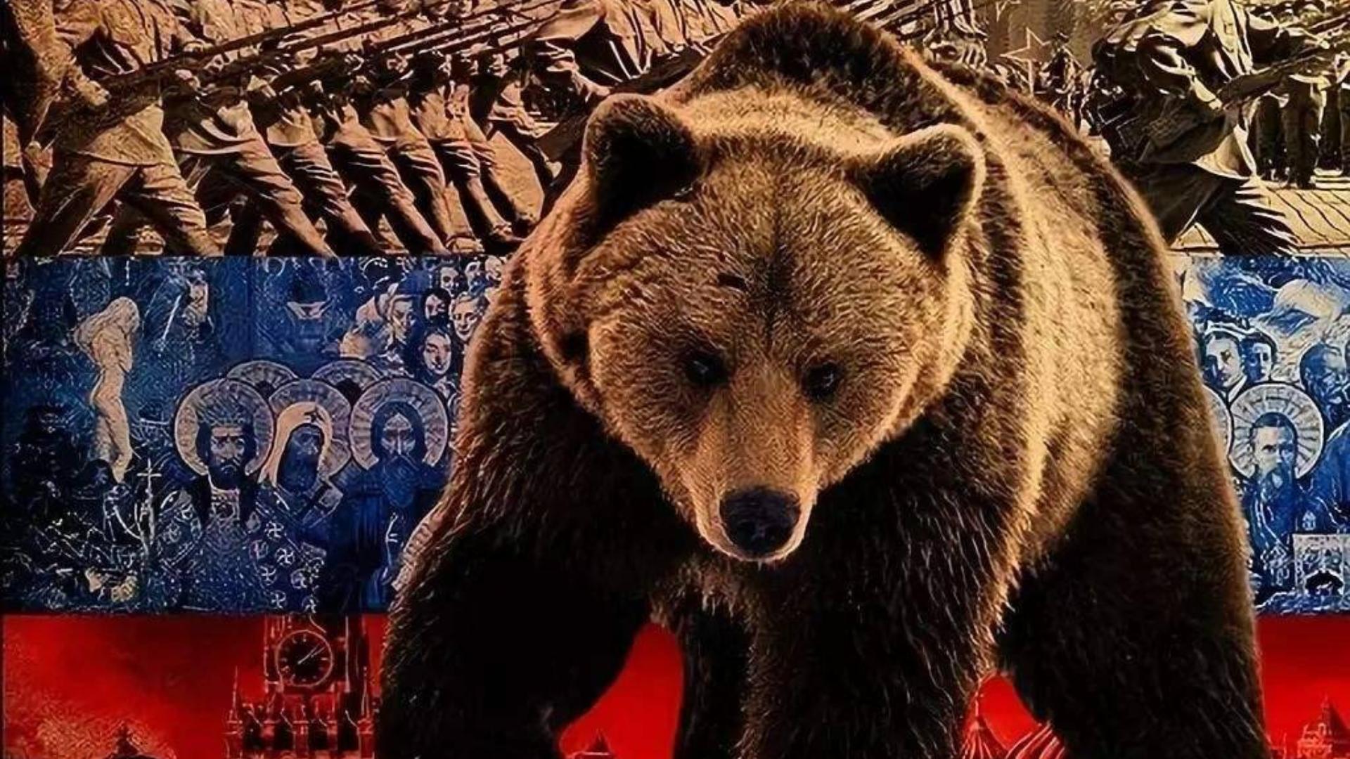 遇见熊,美俄两国人,我们不一样!