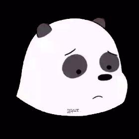 熊猫君来啦