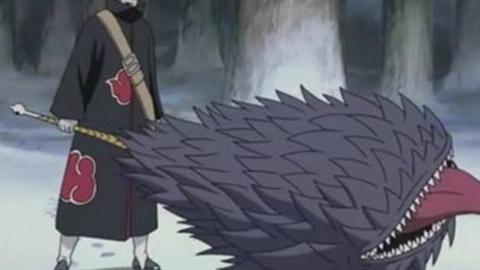火影忍者杂谈15.1  鲛肌到底有没有被判鬼鲛