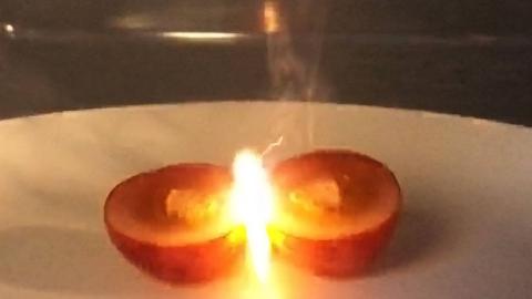 据说把两颗葡萄放进微波炉里,房子都会烧没?