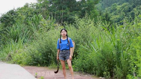 农村妹子对付蚊虫有妙招,用这土方法,轻松搞定夏天的蚊虫骚扰。