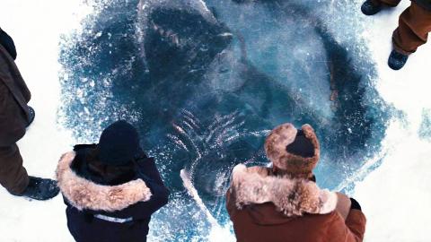 科学家发现冰封十万年的生物,挖掘出来研究,却导致可怕的后果