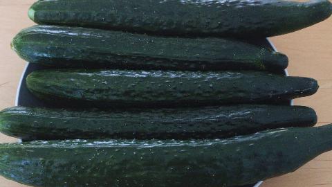黄瓜新吃法,不凉拌不油炒,试试这种新鲜做法,吃一次就忘不了