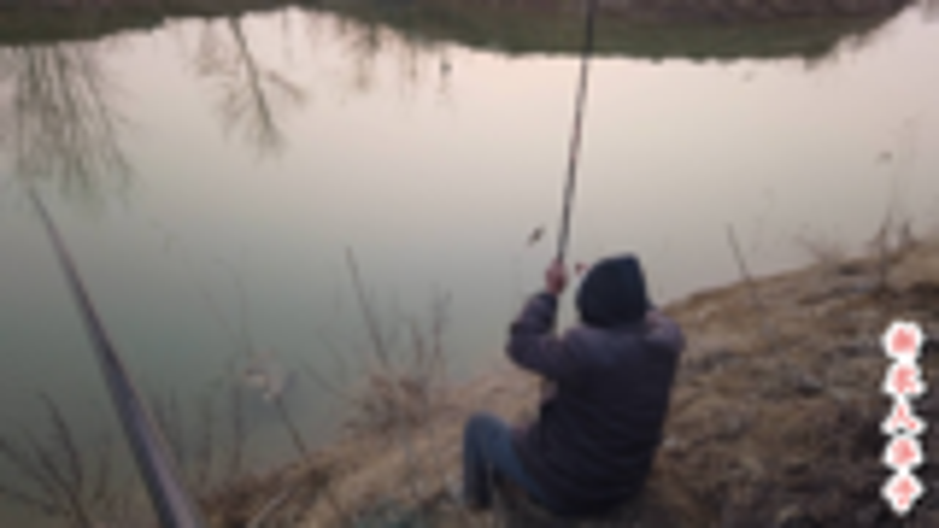 华子用11米鱼竿钓鱼,酒米打窝,鲫鱼连竿上,看鱼的个头就尴尬了