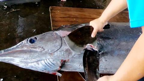 【台湾东港】 - 巨型黑皮旗鱼 & 红肉旗鱼切割