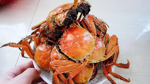 十月份是吃大闸蟹季节,来看看小伙怎么蒸的?个个金黄,很肥