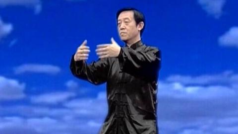 陈正雷 讲解陈氏太极拳养生功之静养功:太极浑圆桩