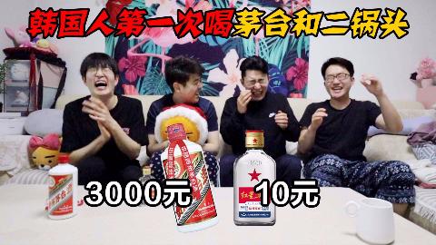 骗韩国朋友茅台和二锅头一样贵,他们喝得出区别吗?