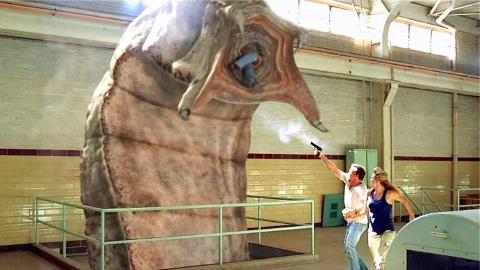 从神话时代至今还让人们着迷的神秘生物——蒙古死亡蠕虫