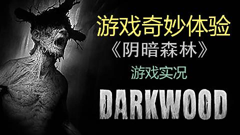 【奇妙】《阴暗森林-最终版》恐怖向游戏实况 第四期