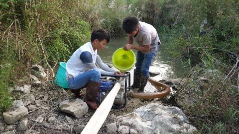 严重干旱导致河道断流,俩小伙花3小时抽干河塘,抓鱼抓到手软