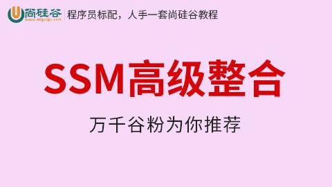 尚硅谷_SSM高级整合
