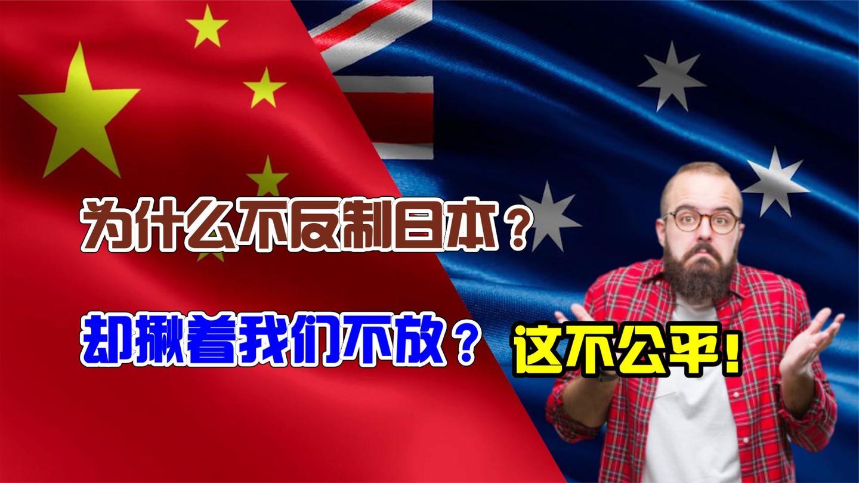 澳洲网民: 为何对我们就追猛打, 却放过日本? 德国网友回答的精彩