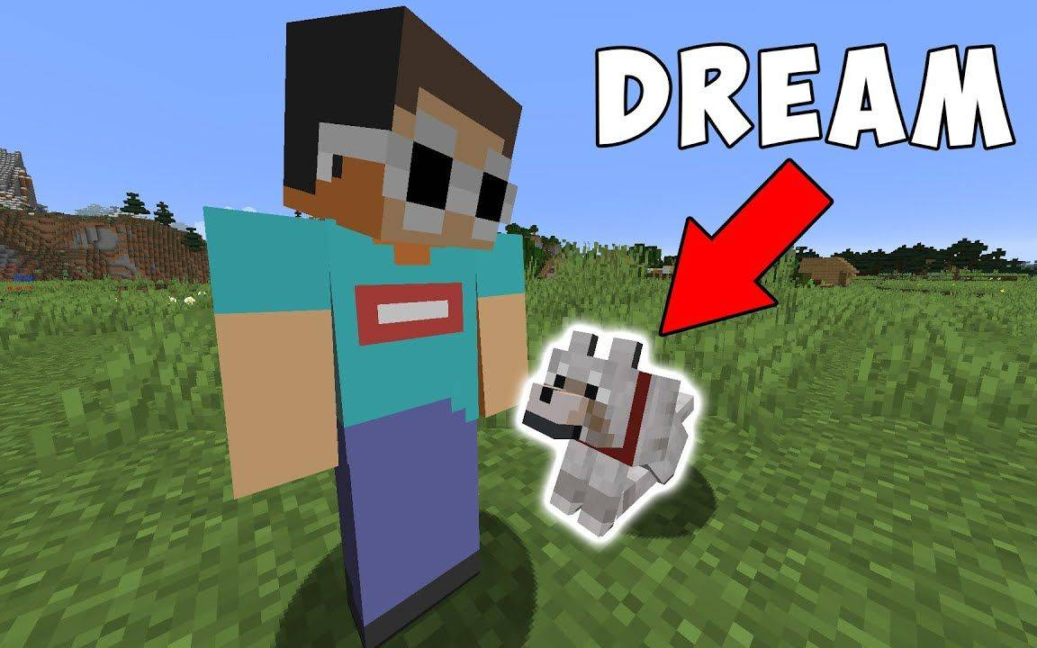 [熟肉][机翻][搬运]我的世界, 但我的朋友是一条狗 Minecraft, But My Friend Is A Dog