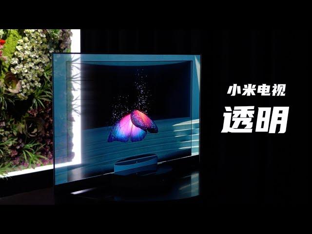 小米透明电视体验 售价五万的未来黑科技