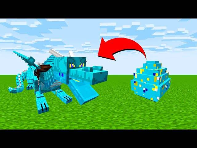 【木鱼】我的世界: 驯龙高手,孵化以太龙,木鱼成为了一个合格的驯龙高手!