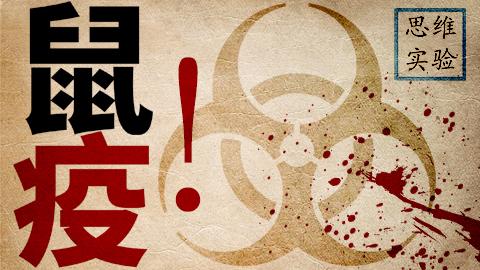 【思维实验室】鼠疫有多可怕?听说过黑死病吧 第二十五期 黑死病
