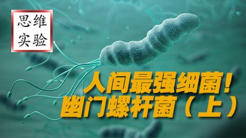 【思维实验室】来自地狱 人间最强细菌---幽门螺杆菌(上)