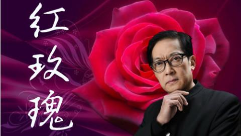 【葛平】红玫瑰