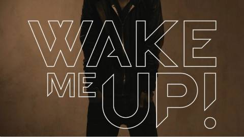 Avicii - Wake Me Up (官方视频)