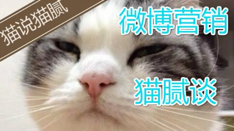 【猫说猫腻】#12 大事件撕逼营销和微博抽奖【如何做碧池】