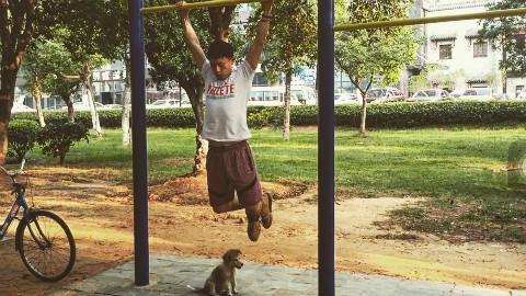 【NuttyBeast】亲民版街头健身!