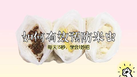 如何有效防止大米生虫
