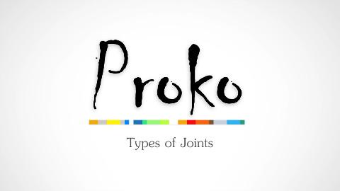 proko的人体解剖课程(熟肉)