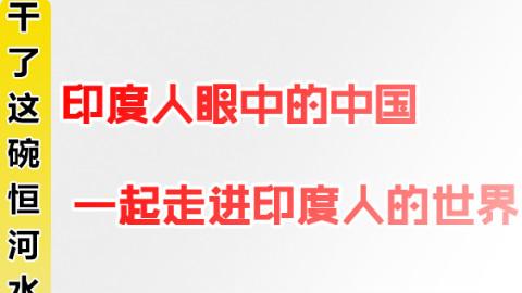 印度人眼里的中国,带领ACER走进印度人的世界 【完结篇+整合】