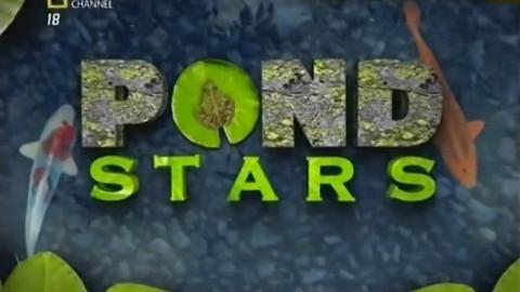 纪录片-打造梦幻池塘-加州溪流鳟鱼池