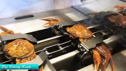 【Luna搬运】神奇的美食制造机之_有关于螃蟹
