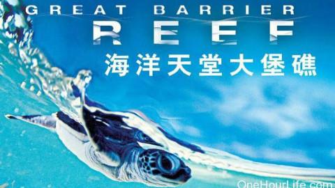 【纪录片】BBC 大堡礁 2012【720P】中文字幕