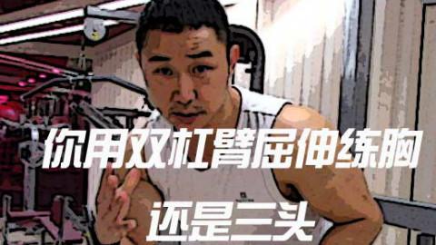 【大树健身】双杠臂屈伸到底练三头好还是胸好