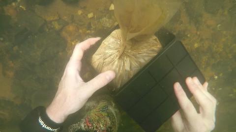 【soso字幕】河底寻宝 找到了人体残骸·已报警 @Sofronio