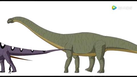 恐龙到底有多大?动画告诉你成年男子与恐龙的大小对比
