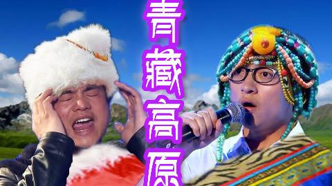【波澜哥X高音哥】青藏高原——把小红红灭掉的高音!!