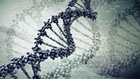 【2049日报】S02E164 基因结构的再发现