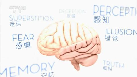 【CCTV9高清】短路的大脑 全3集