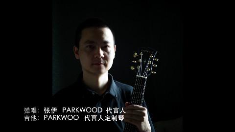 弹唱教学视频系列之八《故乡》 by张伊