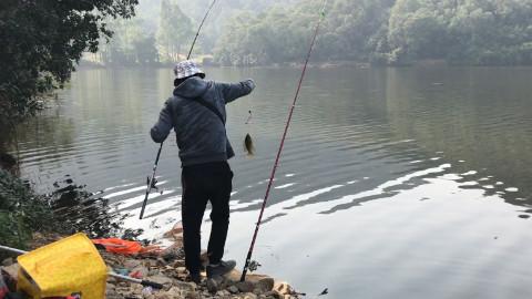 钓了一天的鱼 收获不错