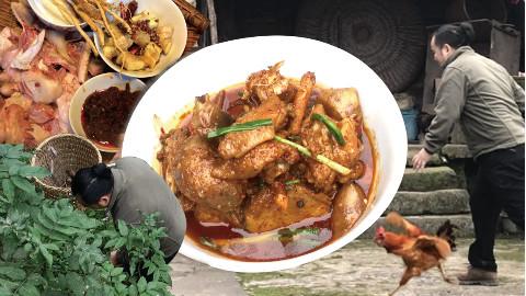 杀鸡挖芋儿,做好吃的重庆芋儿鸡,大吉大利,晚上吃鸡 @胖胖的山头