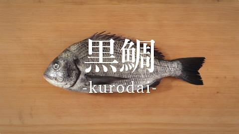 【鱼的处理方法】黑棘鲷的处理方法