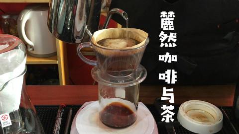 麓然咖啡与茶 @Sofronio @烘豆子的老卢