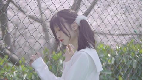 【欧尼】宛如樱花般的爱恋希望能一直与你一起看樱花