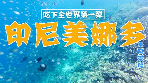【品城记】特辑︱全球排名第一的潜水圣地并非浪得虚名,太过瘾太刺激了!