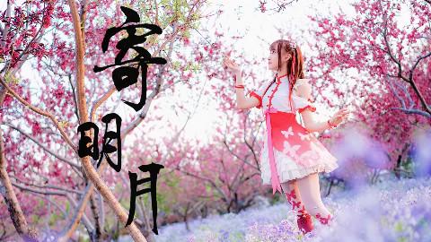 【@小萌】中国风✿寄明月✿超美的景色呀~