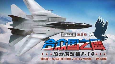 【军武次位面】合众国之鹰 凌云的雄猫F-14(上)